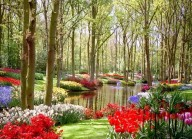 Colorful-Spring-Garden-With-Clean-Lake-805x586