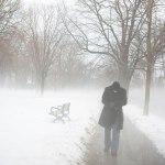 walking-in-fog-0304-lg