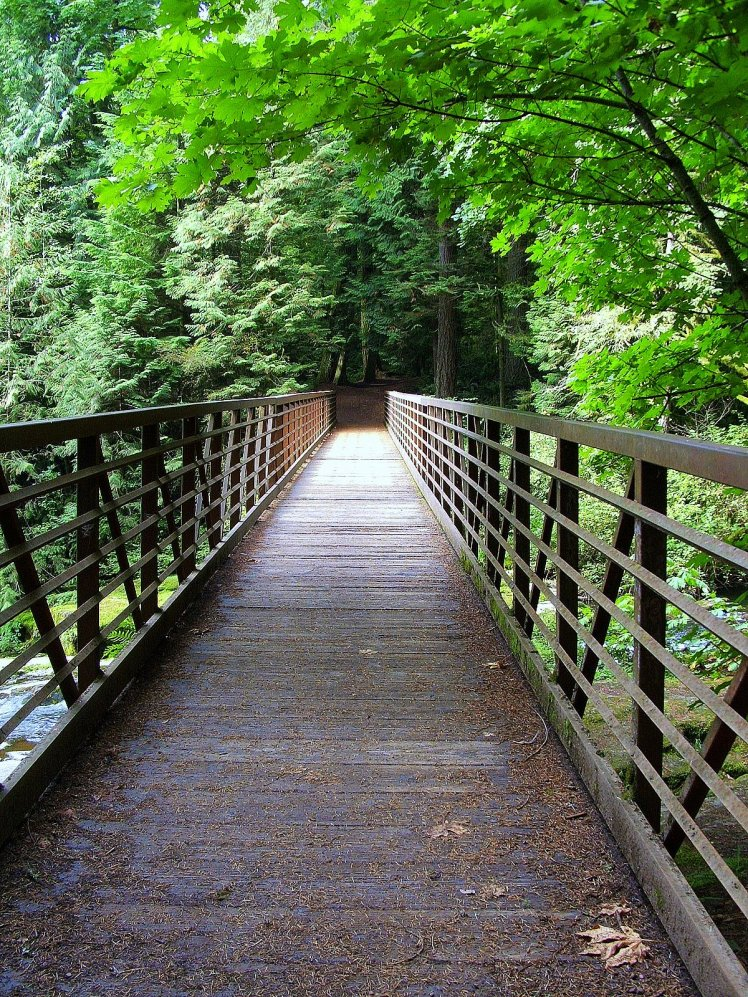 LaCamas Creek Bridge