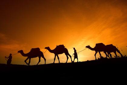 ancient-ghana-camels-