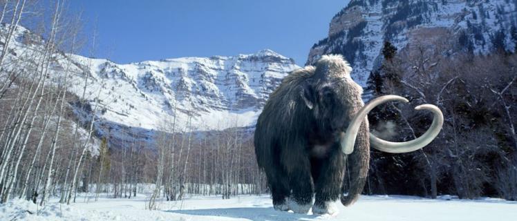 woolly mammoth_zpskoquxpzl