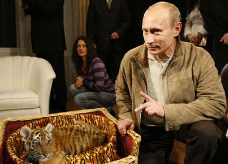 putin-birthday-tig_1007521c
