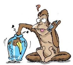 story_monkey_jar