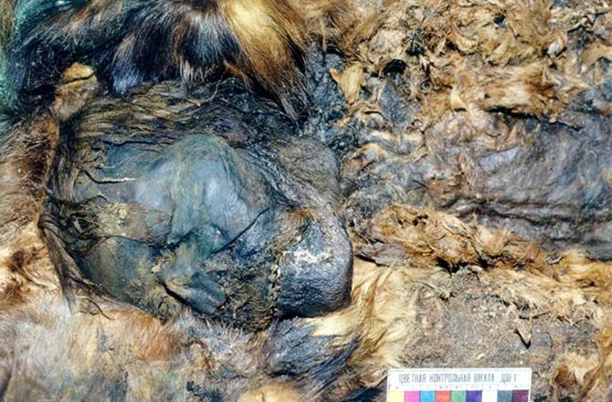 2.siberian-mummy-necropolis