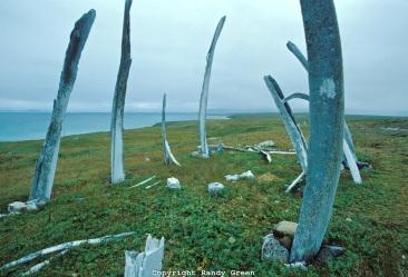 Cape Dezhnev-1