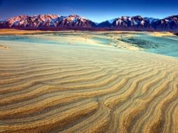 russian desert